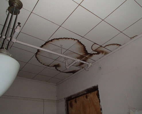 NPN Environmental Indoor Air Quality Ceiling