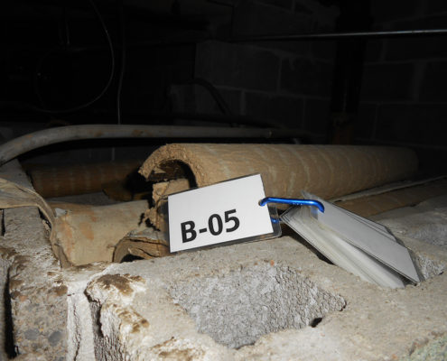 NPN Environmental Asbestos & LBP Management Sampling