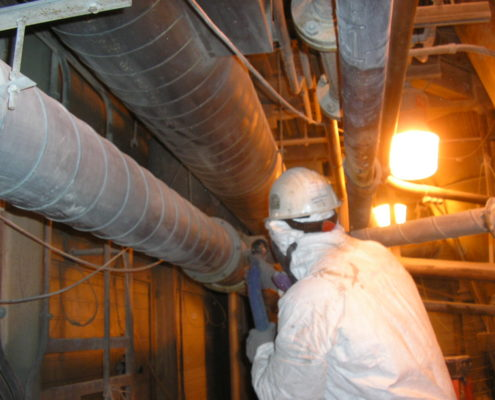 NPN Environmental Facility Decommissioning