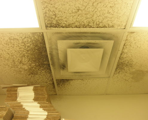NPN Environmental Indoor Air Quality suspect mold ceiling vent
